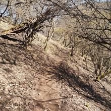 2021. március 4., Spartacus ösvény