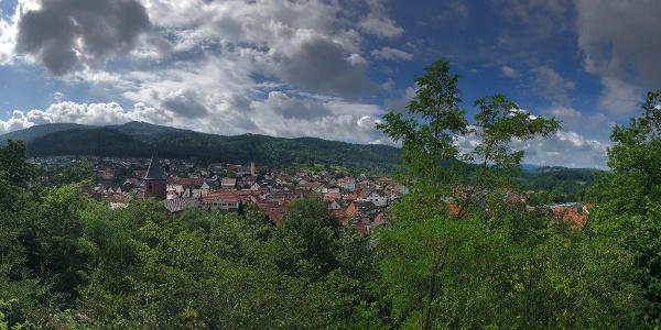 Ausblick auf die Gemeinde Lofffenau