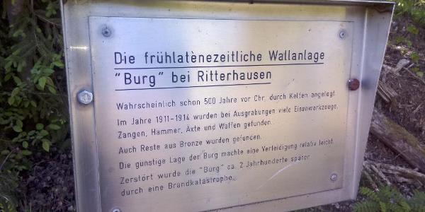 "Hinweistafel ""alte Ringwallanlage"""
