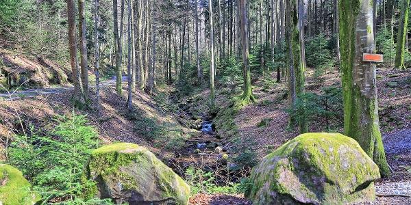 Am Rotenbach (Rotenbächle)