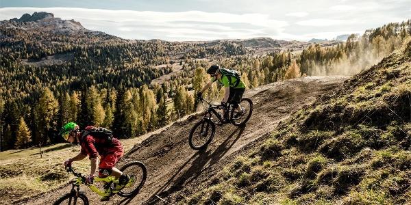 Bike Beats - Ödli trail