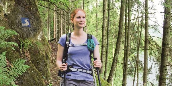 Wandern auf dem Natursteig Sieg