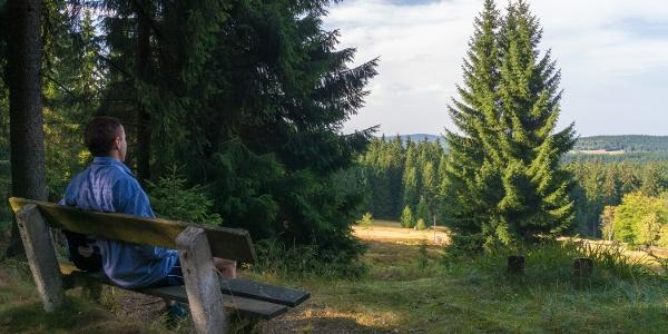 Aussicht Winselburg/ Mühlleithen am Kammweg