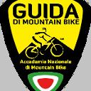 Profile picture of Guido Pittore
