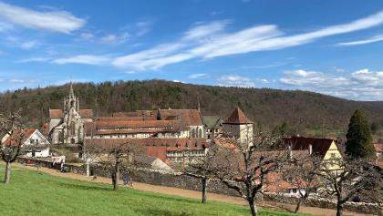 Blick auf Kloster Bebenhausen