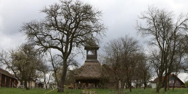 Pankaszi szoknyás harangláb, az Őrség egyik jelképe