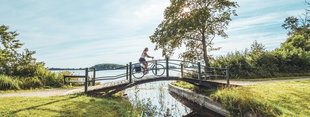 Radfahren im Naturpark Maribo-Seen