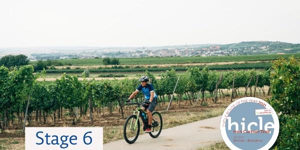 Weinviertler Weingärten