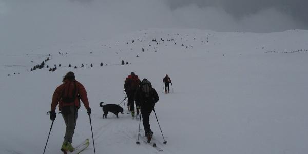 In direction nord to the Cima del Monte Pascolo.