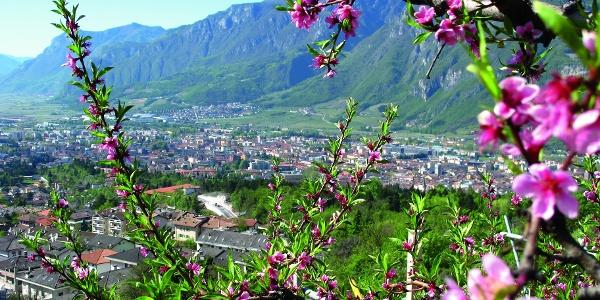 Panoramica su Cognola e Trento