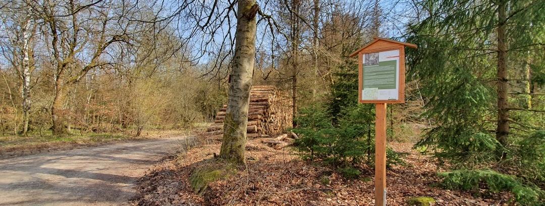 Forstthematischer Wanderweg am Ortsrand von Elbingerode