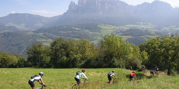 On the High plateau of the Renon mountain you have a good view on the Sciliar.