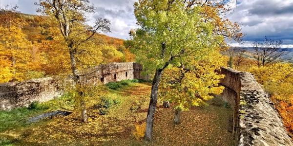 Die Auersburg im Herbst