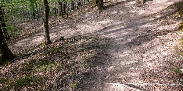 Die Trailabfahrten gebaut von Bikern für Biker.