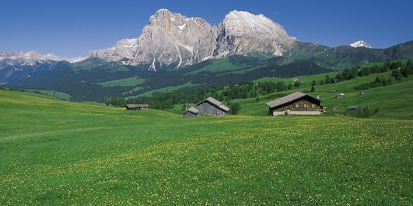 View over the Alpe di Siusi (Seiser Alm) to the Langkofel mountain group
