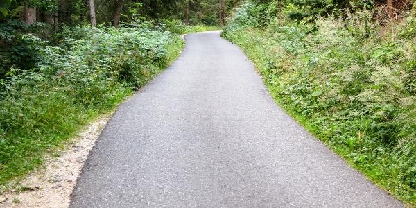 Am Schwarzenbach entlang geht es hinauf zur Liegalm.