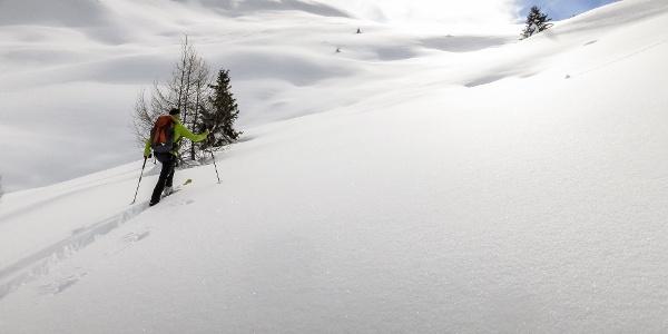 Aufstieg durch den frischen Pulverschnee auf das Marchegg in Ulten.