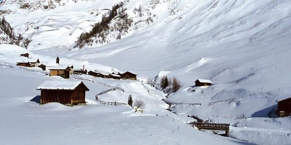 Rodeln im Gebiet der Fane-Alm in Vals am Eingang des Pustertales.