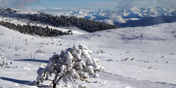 .. durch bezaubernde Winterlandschaften ..