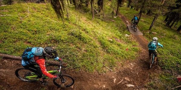 Mountainbikevergnügen im Dreiländereck