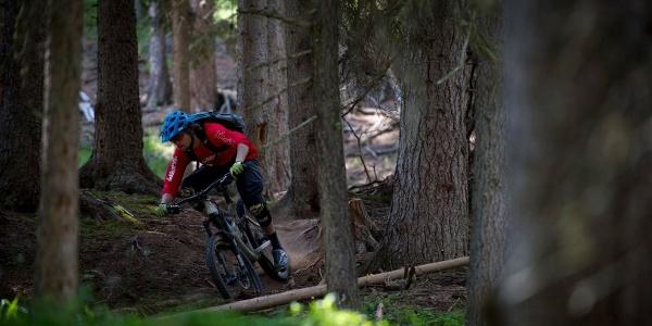 Unterer Spin Trail