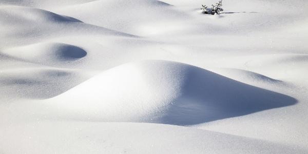 Einfache Skitour auf das Ebene Jöchl im Martelltal.