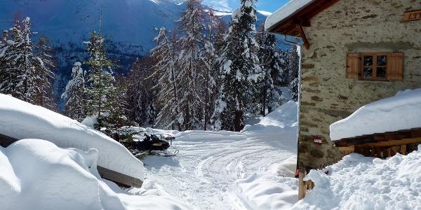 Rodelvergnügen von der verschneiten Lyfialm hinunter zur Enzianhütte.