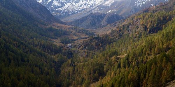 An der Seeber Alm wird auf der 9. Etappe des Tiroler Höhenweges vorbeigewandert.