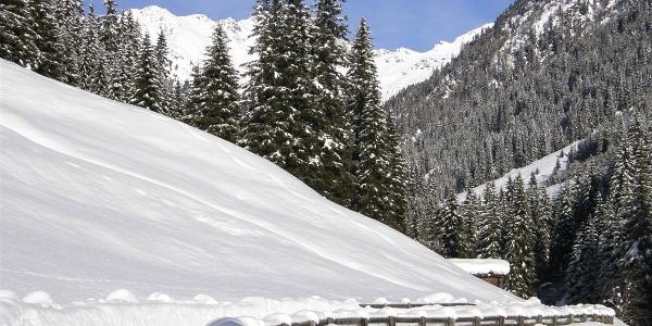 Die Skitour führt zunächst durch das Karbachtal.
