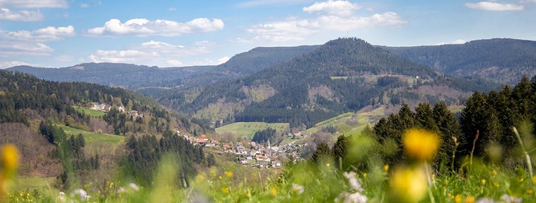 Blick über blühende Bergwiesen, hinunter auf die Ortsmitte von Bad Peterstal