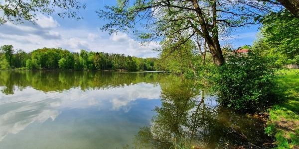 Am Großen Tornowsee