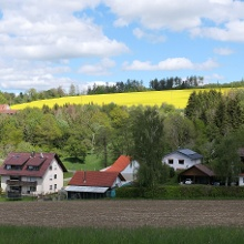 bei Harresheim