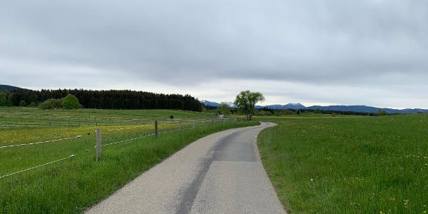 Wenn doch nur jede Tour so starten könnte... Tolle Straßen, grüne Wiesen und Bergpanorama