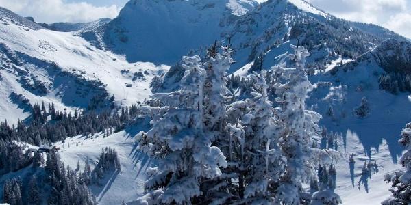 Wintermärchen auf dem Rauhkopf mit Blick zur Rotwand
