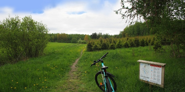 Maastopyöräpolut on hyvin merkitty
