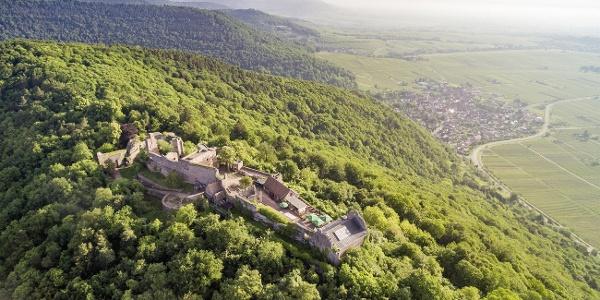 Madenburg und Eschbach von oben