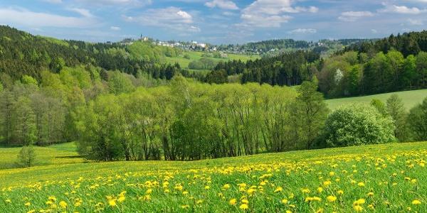 Schöneck Panorama