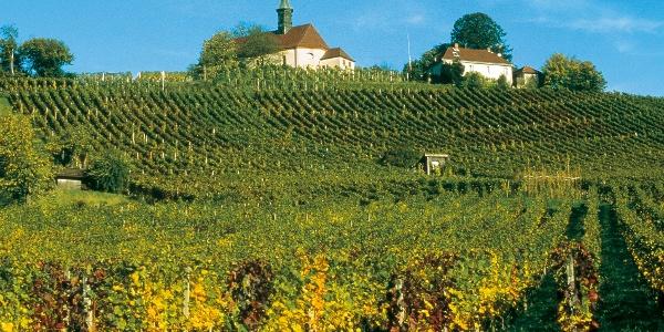 Landschaft bei Gengenbach
