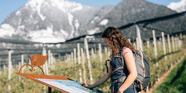 Sentiero delle mele - Tirolo