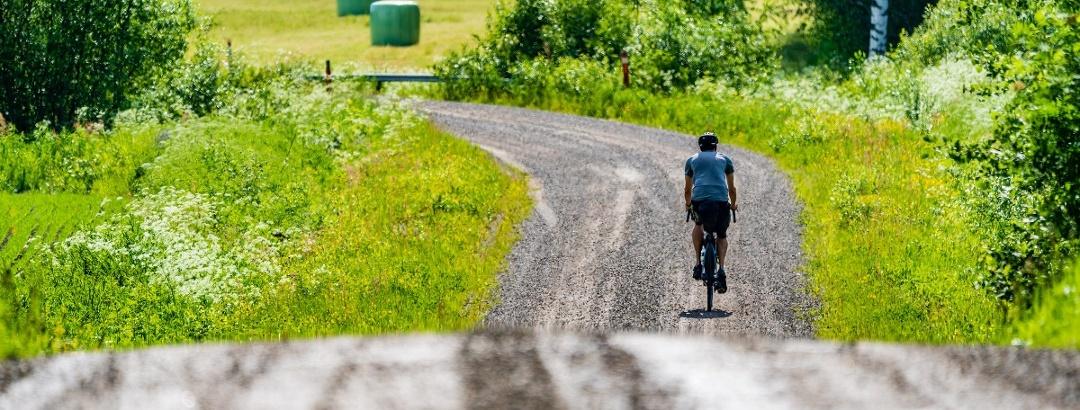 Pyöräilijä maalaismaisemassa