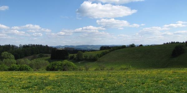 Ausblick vom Sterlberg