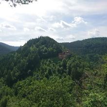 Blick von Erfenstein zur Burg Spangenberg
