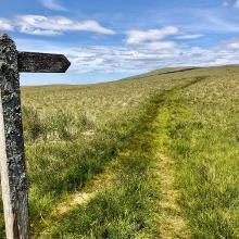 Faint path
