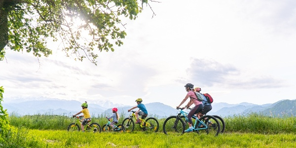 Family cycling in Radovljica countryside