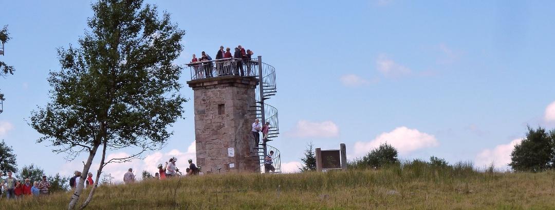 Blick zum Bismarckturm