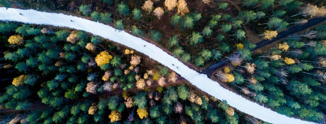 Autumn fun by Lake Saimaa