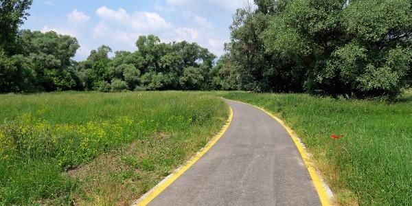 Kerékpáros és kerekesszékes szupersztráda Szob és Ipolydamásd között