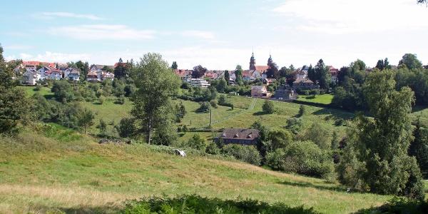 Blick vom Bärenschlössle nach Freudenstadt