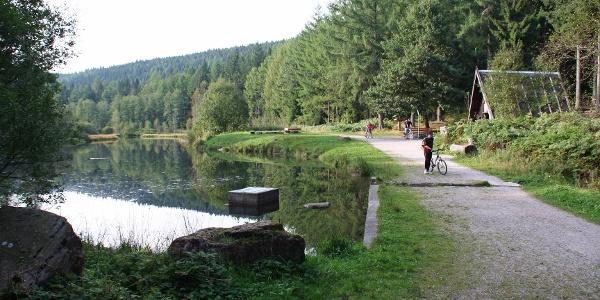 Langenbrunnenweiher