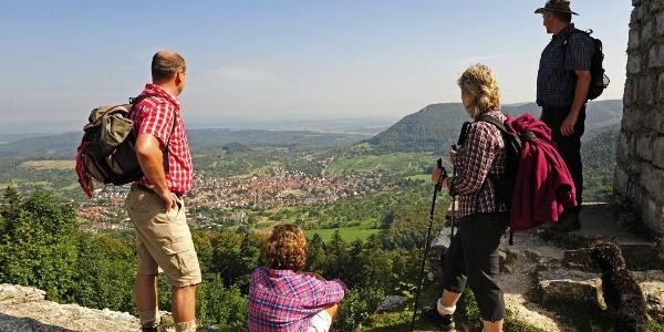 Blick von Burg Hohenneuffen